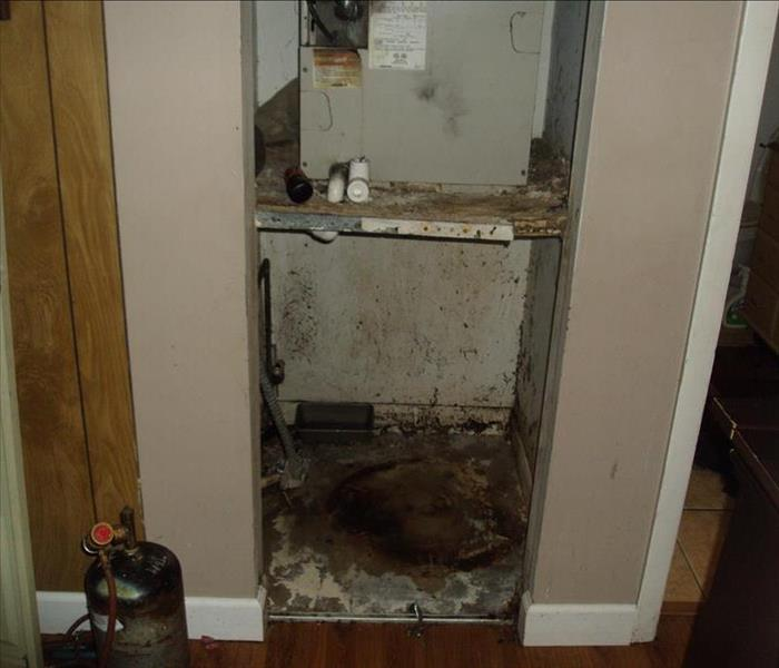 Great Nashville Mold Damage In Mechanical Closet