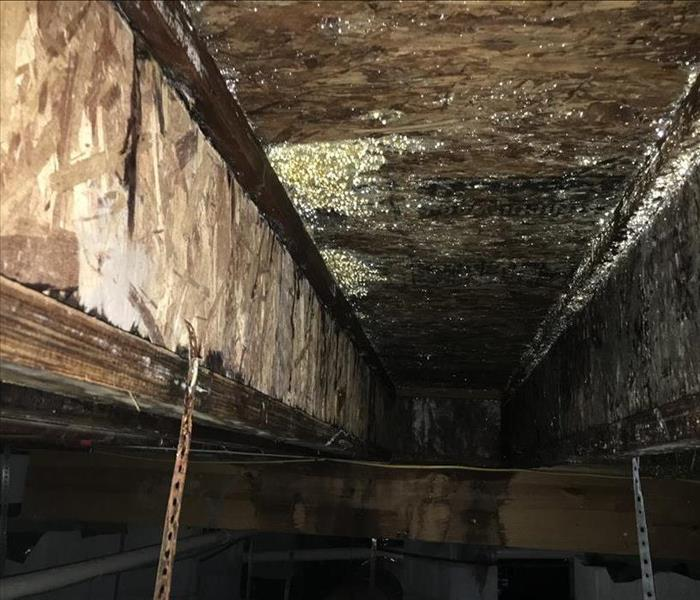 Mold Remediation Preventing Reoccurring Mold Damage In Your Nashville Residence