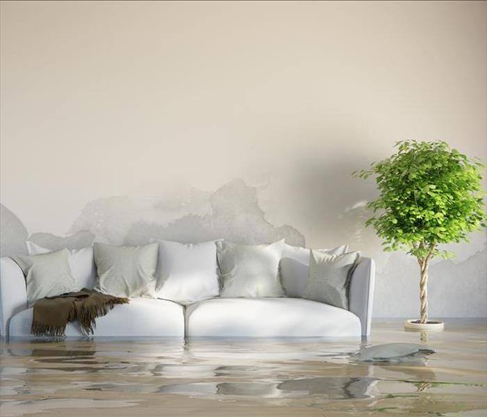 Storm Damage Four Places To Watch To Prevent Nashville Water Damage In Your Home