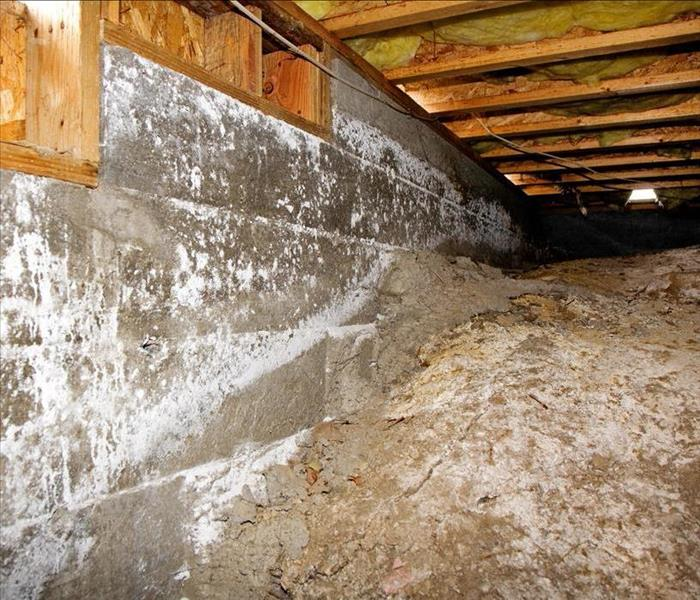 Water Damage The Benefits of Crawl Space Waterproofing For Your Nashville Home