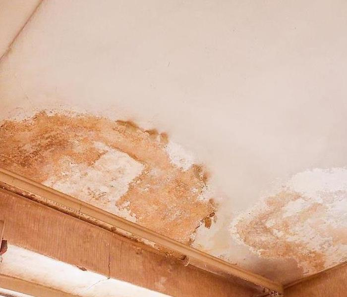 Water Damage Water Damage Restoration in Forest Hills